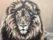 Leeuwenkop, 100 x 70 cm