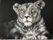 Leeuwinnenkop,80 x 60 cm