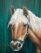 Paard van Ilse, Verkocht